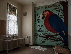 Overbrook Asylum (Cedar Grove, NJ)   Don't Be a Parrot