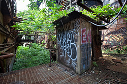 Carrie Furnaces (Rankin, PA) | Overgrown Deck