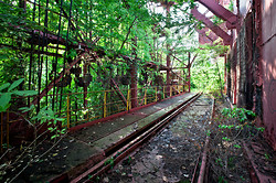 Carrie Furnaces (Rankin, PA) | Overgrown Trestle