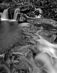 WATER portfolio