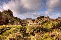 Ramshaw Rocks to Hen Cloud