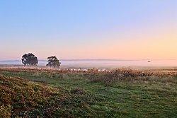 Elmley Sunrise