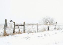 SW Minnesota portfolio