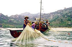 Junks, Sampans & Fishing in the 1970s & 80s portfolio