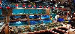 KMPAN-111 Clearwater Bay fish restaurant