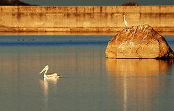 Deogarh Lake, Rajasthan