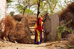 Colourful sari in Chatra Sagar village