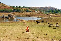 Ruins near Nagda Temple, Udaipur area