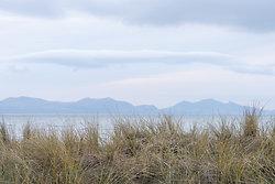 Mountain Grass Seascap...