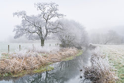 The frosty Wey