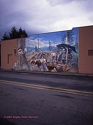 Walls Of Distinction portfolio