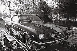 Old Detroit Iron portfolio