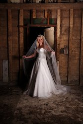 Bride's Dress Revisited portfolio