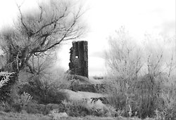 Winter Doonbeg Castle B/W