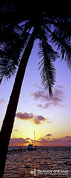 Panoramic Vertical Images portfolio