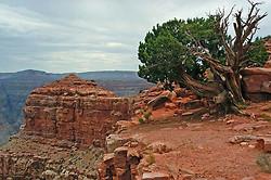 Grand Canyon - west rim portfolio
