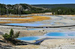 Yellowstone National Park portfolio
