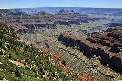 Grand Canyon - North Rim portfolio