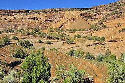 Canyon de Chelly portfolio
