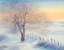 Verses of Winter portfolio