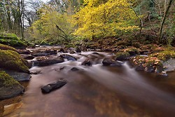 Autumn at Devil's Glen