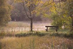 Donadea Lake II