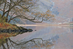 Glendalough Reflection