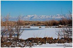 Frozen Desert Pond