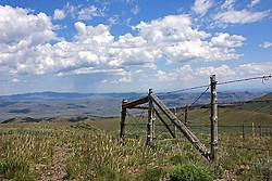 High Altitude Fence - Lye Creek