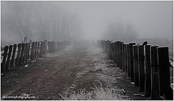 Corrals in the Fog