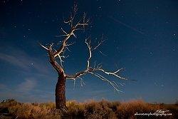 Night Photography portfolio