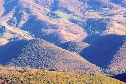 Shenandoah Valley Virginia portfolio