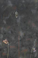 Bird Paintings portfolio