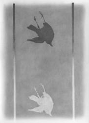 Bird drawings portfolio