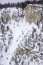 Yellowstone portfolio
