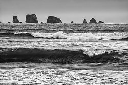 Swells and Sea Stacks, WA (2014/D00649)