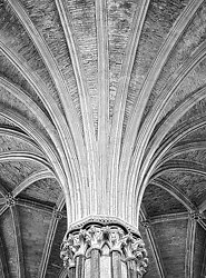 Radials, Chapter House, Ely Cathedral (2008/4954)