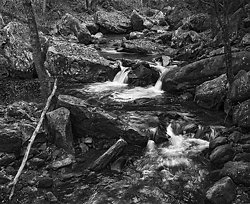 Cascades and Fall Leaves, Miller Creek, WV.  (2014/D01392)