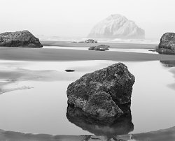 Sea Stacks  Bandon Beach, OR (5746)
